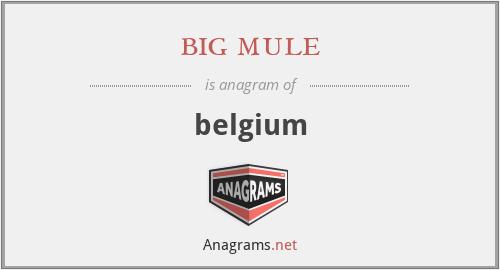 big mule - belgium