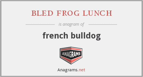 bled frog lunch - french bulldog