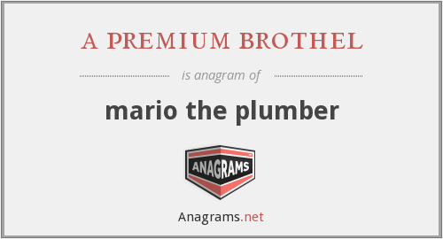 a premium brothel - mario the plumber