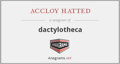 accloy hatted - dactylotheca