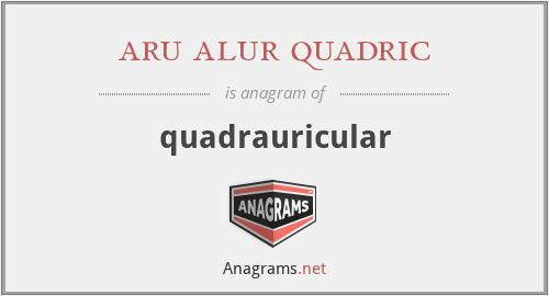 aru alur quadric - quadrauricular