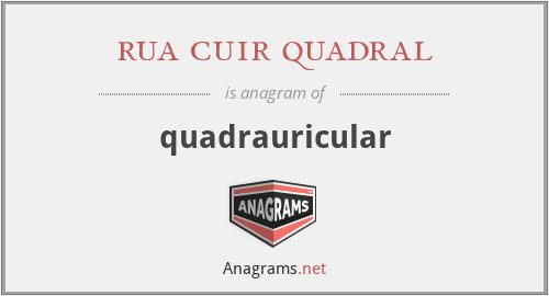 rua cuir quadral - quadrauricular