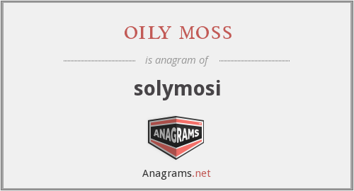 oily moss - solymosi