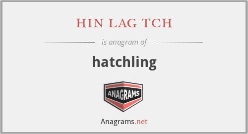 hin lag tch - hatchling